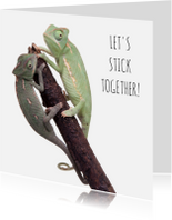 Liefde kaarten - Liefde - Let's stick together - Kameleon