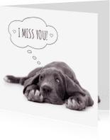 Liefde kaarten - Liefde -mis je- Duitse dog puppy