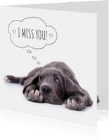 Liefde kaarten - Liefde | mis je | Duitse dog puppy
