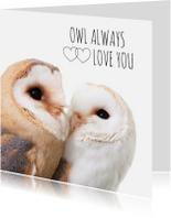 Liefde kaarten - Liefde - Owl always love you uiltjes