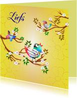Zomaar kaarten - Liefs met Vogeltjes