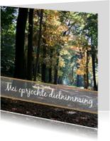 Fryske kaartsjes - Mei oprjochte dielnimming
