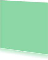 Blanco kaarten - Mint enkel vierkant