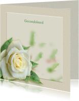 Condoleancekaarten - Mooie rouwkaart met een witte roos op gewassen ondergrond