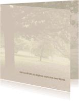 Rouwkaarten - Mooie rustige bedankkaart met de stilte van het bos