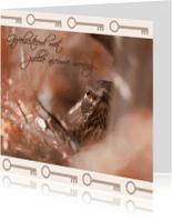 Felicitatiekaarten - Nieuw nestje