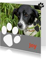 Condoleancekaarten - Overlijden hond met eigen foto