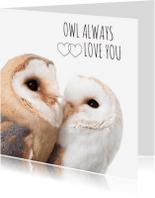 Liefde kaarten - Owl always love you uiltjes