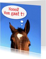 Dierenkaarten - Paardenkaart Hoe gaat het