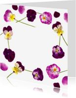 Bloemenkaarten - Paarse viooltjes