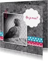 Uitnodigingen - Papegaai met linten - DH