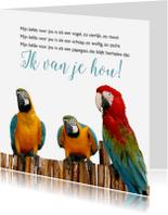 Gedichtenkaarten - Papegaaien-isf