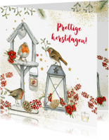 Kerstkaarten - Prettige Kerstdagen vogelhuisje roodborstjes