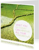 Spreukenkaarten - Quote wijsheid voor morgen