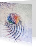 Kunstkaarten - Regenboog schelp