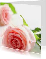 Bloemenkaarten - Romantische roze rozen