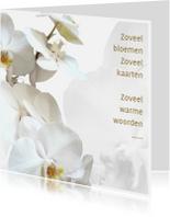 Rouwkaarten - Rouw bedankt Orchidee - hemels wit