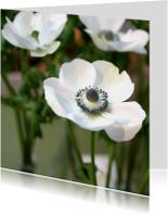 Rouwkaarten - Rouwkaart bloem anemoon