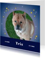Condoleancekaarten - Rouwkaart hemel met sterren - huisdier