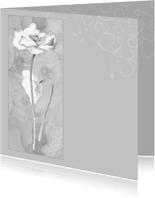 Rouwkaarten - rouwkaart klaproos grijs