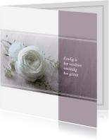Rouwkaarten - Rouwkaart witte roos klassiek
