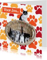 Dierenkaarten - Schattige katten kaart - Remco