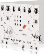 Sorry kaarten - SORRY FOR BUGGING YOU - Keverkaart