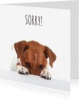 Sorry kaarten - Sorry kaart - Boris