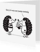 Sorry kaarten - Sorry - Stegelig egeltje - TW