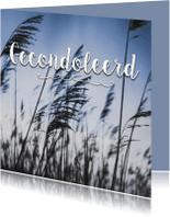 Condoleancekaarten - Sterkte kaart Gecondoleerd  fotokaart condoleance