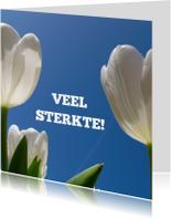 Sterkte kaarten - sterkte kaart tulpen II - LB