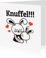 Sterkte kaarten - Sterkte - Konijn knuffel - TW