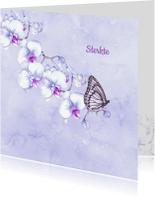 Sterkte kaarten - Sterkte orchidee