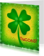 Coachingskaarten - Succes klaver 4