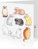Dierenkaarten - Tien katten