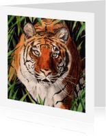 Dierenkaarten - Tijger - kunstkaart