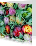 Bloemenkaarten - Tulpen fotokaart
