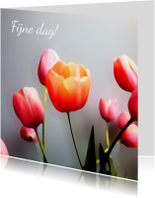 Bloemenkaarten - Tulpen schilderstijl eigen tekst