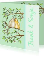 Felicitatiekaarten - Twee duifjes