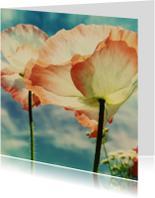 Bloemenkaarten -  twee klaprozen voor jou