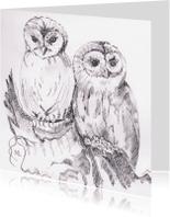 Dierenkaarten - Twee uilen
