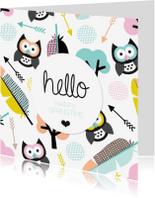 Vriendschap kaarten - Uil en veertje retro lente kaart