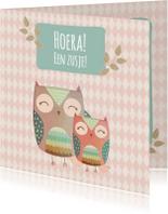 Geboortekaartjes - Uiltjes Hoera een zusje! - BK