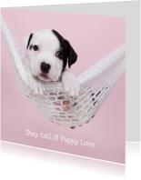 Valentijn - Puppy Love - Hond hangmat roze