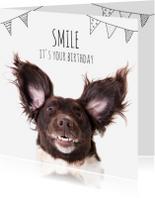 Verjaardagskaarten - Verjaardag | A doggy birthday smile!