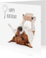 Verjaardagskaarten - Verjaardag - Boris de hond met cadeautje