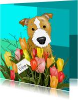 Verjaardagskaarten - Verjaardag - hond met tulpen