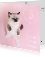 Verjaardagskaarten - Verjaardag - Kitten Ballonen Jarig - Roze