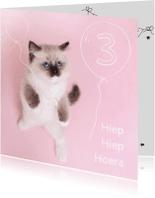 Verjaardagskaarten - Verjaardag - Kitten Ballonen Jarig