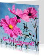 Verjaardagskaarten - verjaardagskaart bloemen -LB
